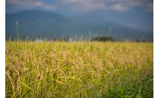 農業振興基金