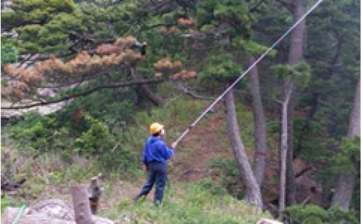 ②環境、安全・防災に関する事業