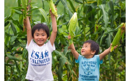 3 子供たちの健全育成に関する事業