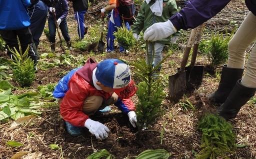 (4)花と緑があふれるまちづくりに関する事業