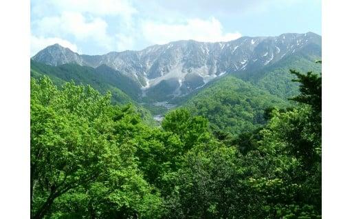 1.自然環境(大山)の保護に関する事業