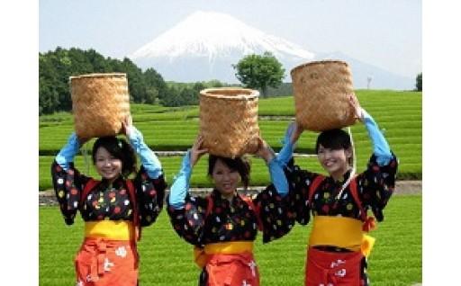 4.富士市特産品の振興