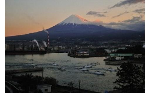 7.田子の浦港の整備
