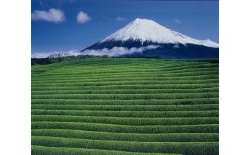 1.世界遺産富士山の活用