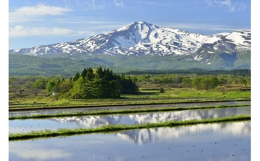 1.ふるさとの豊かな自然環境や美しい景観を保全したい