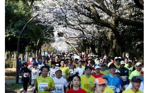練馬こぶしハーフマラソンを盛り上げたい!