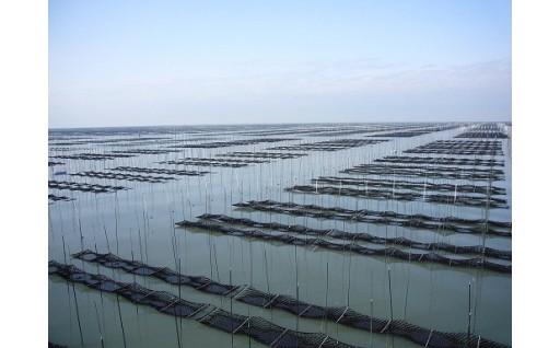 5「柳川のもんはよかばんも」産業活性化サポート事業