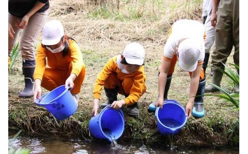 自然環境の保全事業