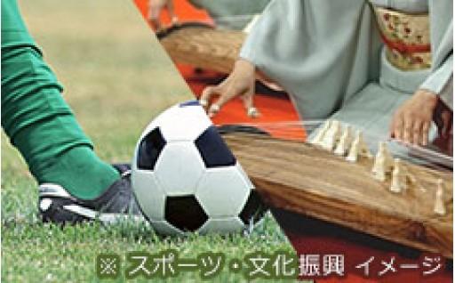 ③歴史文化・芸術・スポーツ支援事業
