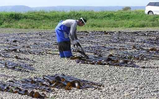 漁業の振興に関する事業