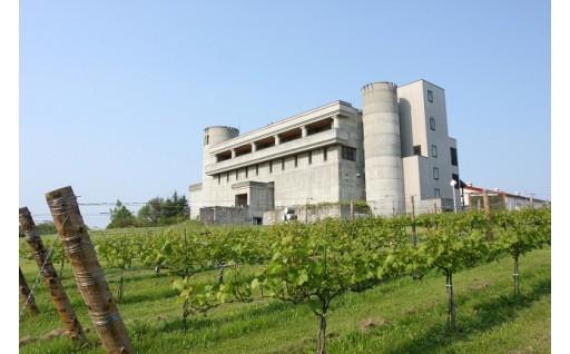 ・ワイン城魅力化向上改修事業