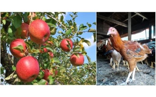 3 農林業、特産品の振興に関する事業