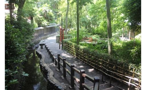 ②国分寺崖線、樹林地などの緑地や地下水・湧水の保全(自然環境の保全に関する事業)