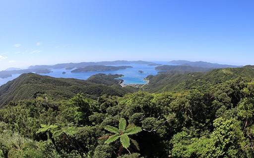 自然環境や景観の保全・再生に資する事業