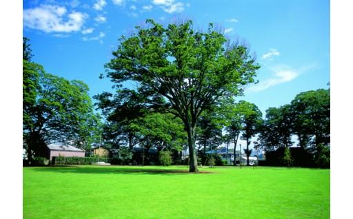 4.豊かな自然と共生するまちづくり(自然・環境)