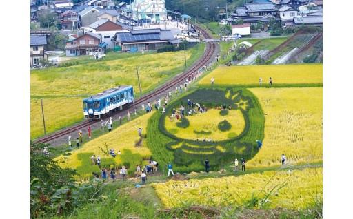 山岡町のまちづくり活動を応援