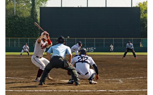 (8)スポーツ環境の整備その他スポーツ振興【スポーツ振興基金】