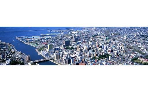(1)市政全般に活用してほしい