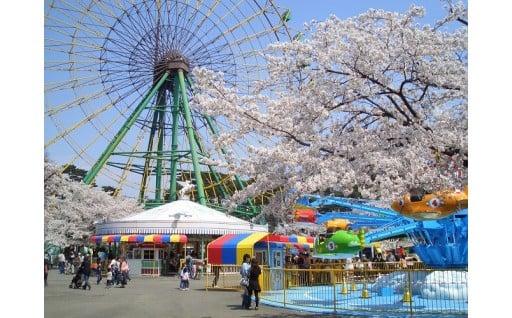 華蔵寺公園遊園地管理運営事業