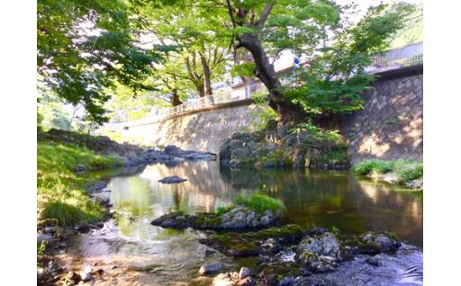 自然環境の保全または公衆衛生の向上に関する事業