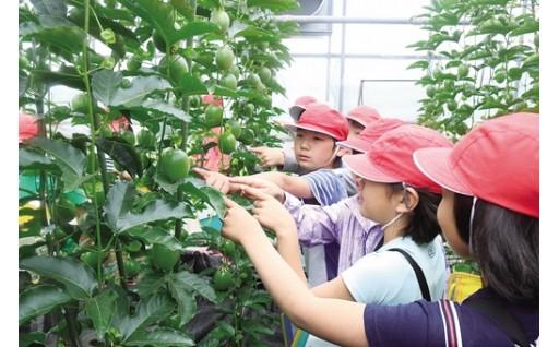 未来を担う子どもの教育環境の充実に関する事業(学力体力日本一をめざす教育環境のまち)