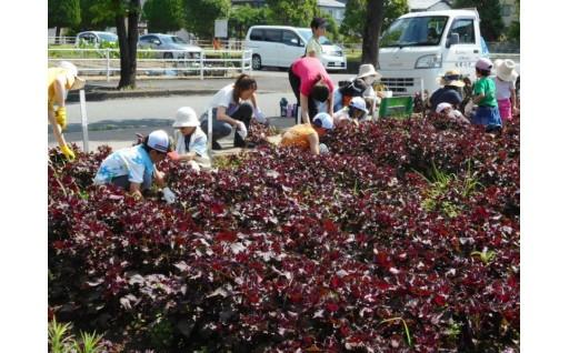 111 木田地区のまちづくりを応援する