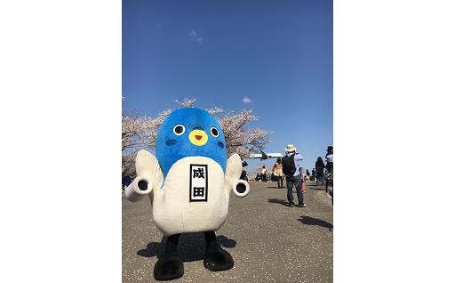 成田市におまかせ