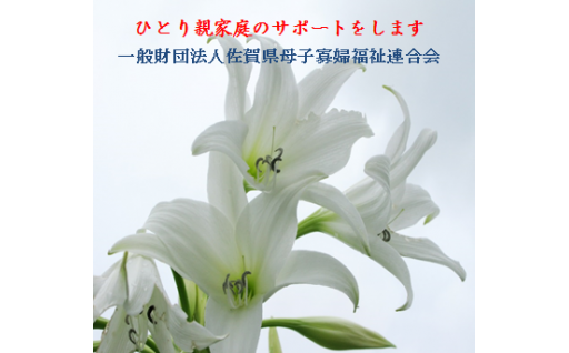 61)一般財団法人佐賀県母子寡婦福祉連合会