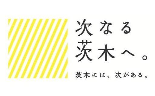 教育「らしさをいかす 次代の茨木を担う人を育むまちに」