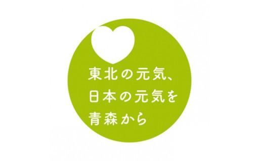 6 東日本大震災に係る復旧・復興対策