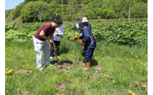 環境・文化の保全及び景観の維持、再生に関する事業
