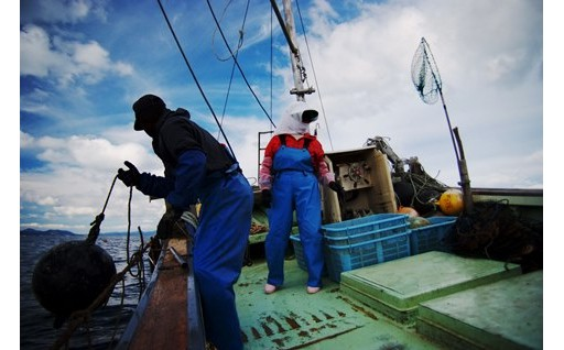 (3)農業水産業の振興・観光の振興
