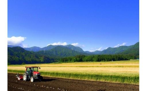 7.豊かな農地の整備・活用