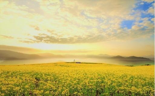 5自然と共生する美しく快適なふるさとづくり