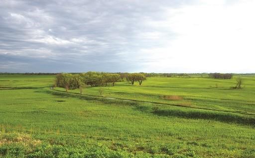 自然環境の保全と地球温暖化対策