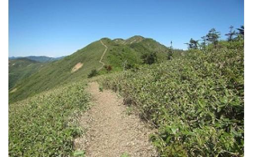 「ぐんま県境稜線トレイル」整備事業