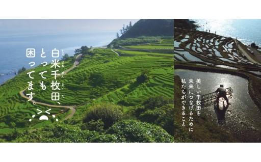 【期間限定】世界農業遺産・国指定文化財(名勝)「白米千枚田」を後世に遺したい!