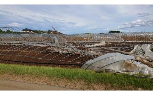7.台風15号の復興支援事業