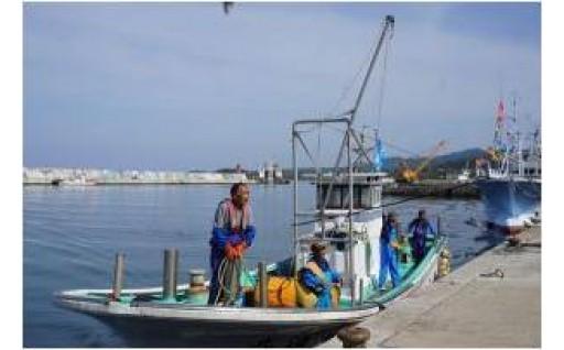 ④産業の振興で、さい活性化に取組みます(水産業の安定と観光の振興)