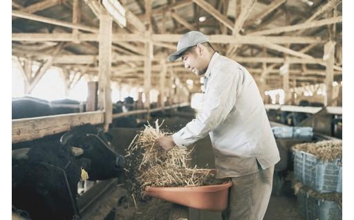 6.神戸ビーフの生産現場を支援したい