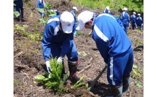 6 ふるさとの環境保全事業(森林維持整備、環境改善)