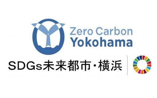 22.温暖化対策の推進を応援したい!(温暖化対策の推進)