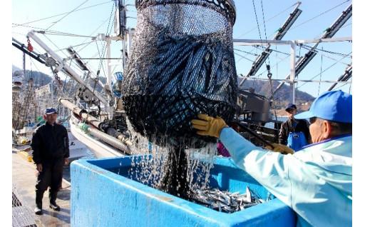 7)頑張るみやぎの水産業を応援!
