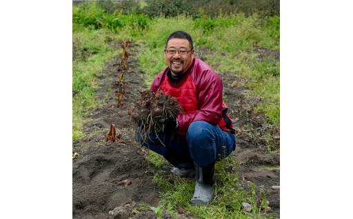 京都の農業を未来へ!「京野菜」の生産者を応援!