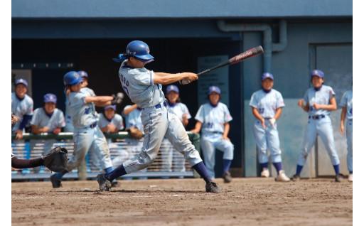全日本大学女子野球選手権など、スポーツの充実