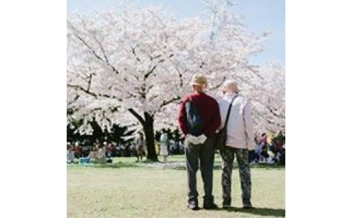4.高齢者福祉に関すること