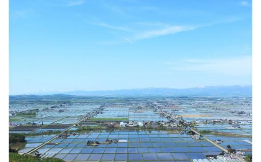 ⑨地域資源活用プロジェクト『農業を守り育てる事業』