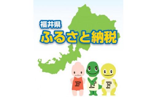 【福井工業大学】新型コロナ学生支援【お礼の品なし】