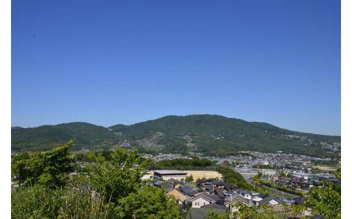 生駒市誕生50年を祝おうコース