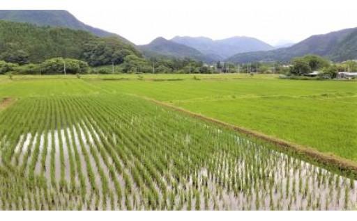 田園風景を維持するための保全の取り組み
